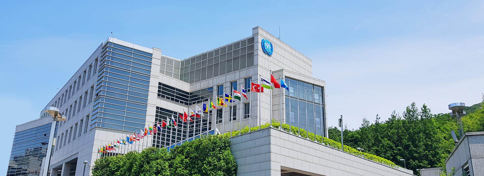 IVI - International Vaccine Institute